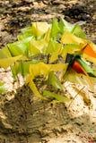 Pagodas de sable Image libre de droits