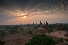 Pagodas Field in bagan Stock Image