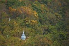 Pagodas in the forest at Win Sein Taw Ya in Kyauktalon Taung, near Mawlamyine, Myanmar. Royalty Free Stock Photo