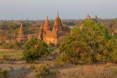 Pagodas hidden in vegetation Royalty Free Stock Photos