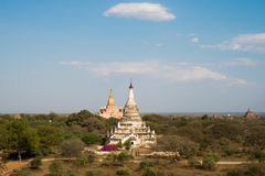 Pagodas and Temples in Bagan Royalty Free Stock Photography