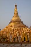 pagodashwedagon yangon Royaltyfri Bild