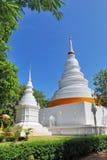 pagodawhite royaltyfri bild