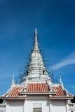pagodawhite Royaltyfria Bilder