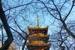 pagode da Cinco-história no santuário de Ueno Toshogu na noite Tóquio, Japa fotografia de stock