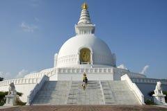 Pagode da paz de mundo de Lumbini fotos de stock