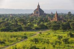 Pagode de Bagan em Myanmar fotografia de stock royalty free