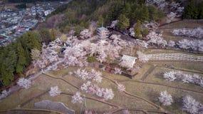 Pagode de Chureito na mola Sakura Aerial Imagens de Stock Royalty Free