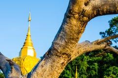 Pagode de Phadan na rocha mountian, dourada, Sakonnakorn Tailândia foto de stock
