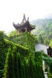 Pagode do chinês tradicional Foto de Stock Royalty Free