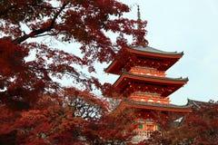 Pagode drei Schicht des Dachs mit Rot verlässt auf dem Baum des Herbstes an Kiyomizu-Tempel lizenzfreie stockfotografie