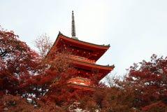 Pagode drei Schicht des Dachs mit Rot verlässt auf dem Baum des Herbstes an Kiyomizu-Tempel stockfotografie