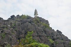 Pagode oben auf einen Hügel Stockbild
