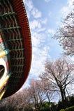 Pagode- und Pflaumeblumen Lizenzfreie Stockfotografie