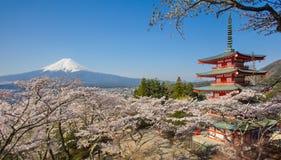 Pagode vermelho da montanha Fuji e do Chureito com flor de cerejeira sakura Imagens de Stock Royalty Free