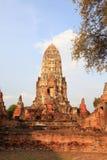 Pagode von Ayuthaya, Thailand Stockbilder
