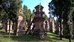 Pagodebos bij Shaolin-Tempel royalty-vrije stock foto's