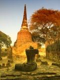 Pagoden av den gamla templet på det Ayuthaya landskapet som är historisk parkerar Thailand Royaltyfri Foto