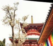 Pagoden av fred och magnolian blomstrar framtill Arkivbilder