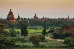 Pagoden van Bagan Stock Fotografie