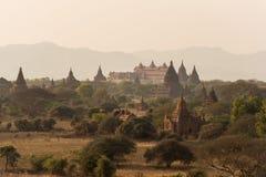 Pagodlandskap slätten av Bagan, Myanmar royaltyfri fotografi