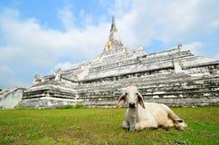 pagodowy phukhaothong świątyni wat Obrazy Royalty Free