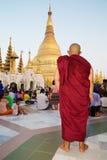 Pagodowy Shwedagon w Yangon, Myanmar Fotografia Stock