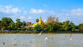 pagodowy shwedagon Yangon Zdjęcia Royalty Free
