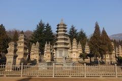 Pagodskog på den Shaolin templet Royaltyfri Foto
