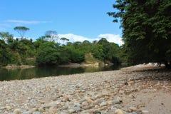 Paguey河的石河岸在巴里纳斯州,委内瑞拉在一个晴天 免版税库存图片