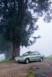 PAHANG MALEZJA, LUTY, - 27: Taxi parkowy niedaleki drzewo przy Cameron Zdjęcia Stock