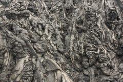 Pahoehoe lava Arkivbild