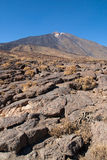 Pahoehoe lava at mount Teide Stock Photography