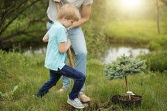 Pai adulto de sorriso e seu filho que plantam uma árvore fora no parque fotos de stock