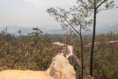 Pai Canyon in Thailand Royalty Free Stock Photography