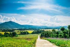 Pai dans l'amour en Mae Hong Son Province Images stock