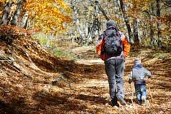 Pai e filho na floresta do outono Fotografia de Stock Royalty Free