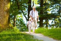 Pai e filho que andam o trajeto ensolarado da floresta imagens de stock royalty free