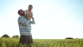 Pai e filho que jogam com um cão no campo de trigo Conceito de família do dia de pai vídeos de arquivo