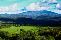 Pai góra Obraz Stock