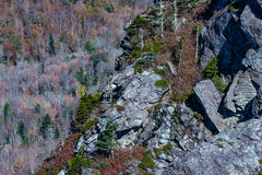 Pai grande Mountain Imagem de Stock