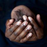 Pai preto que guarda o bebê recém-nascido Imagens de Stock