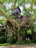 Pai Tree House Fotografie Stock