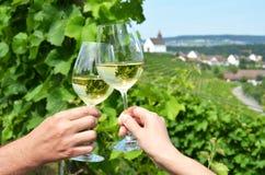 Paia dei bicchieri di vino contro le vigne Fotografia Stock Libera da Diritti