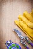 Paia del legame di cavo molle del pruner del giardino dei guanti protettivi su legno BO Fotografia Stock