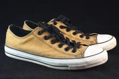 Paia della scarpa da tennis di Brown Fotografia Stock Libera da Diritti