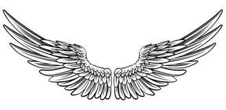Paia delle ali spante illustrazione vettoriale