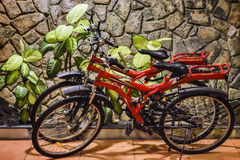 Paia delle biciclette Immagine Stock