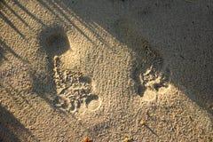 Paia delle orme sulla sabbia della spiaggia Fotografia Stock Libera da Diritti