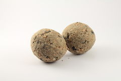 Paia delle palle grasse per l'alimentazione degli uccelli selvaggi immagini stock